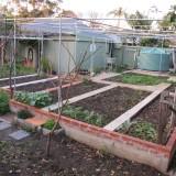 Garden Divided